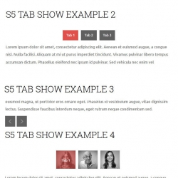 s5-tab-show